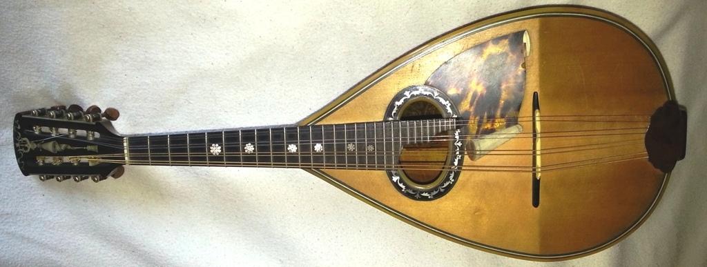 Luigi Embergher Mandolin Buying Selling model 5